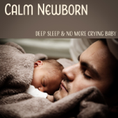 Calm Newborn: Deep Sleep & No More Crying Baby, White Noise, Soothing Nature Sounds, Lullaby