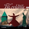 Mevlana Best Of Vol 4