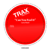 Can You Feel It - EP