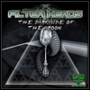 The Dark Side of the Spoon - Single