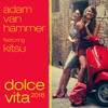 Adam van Hammer - Dolce Vita 2016 (Split Mirrors Remix)