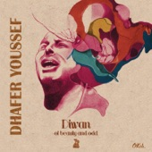 Dhafer Youssef - Fly Shadow Fly