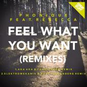 Feel What You Want (AKA AKA & Thalstroem Remix) [feat. Rebecca]