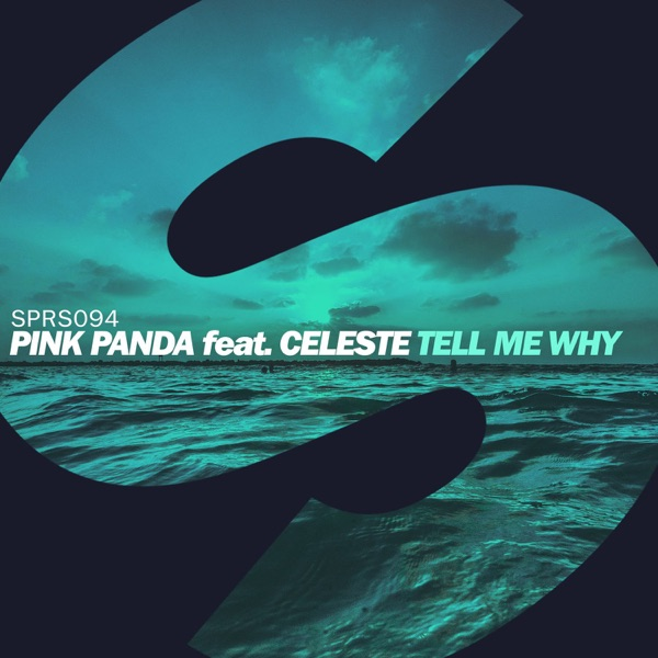 Tell Me Why (feat. Celeste) - Single
