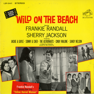 Various Artists - Wild On the Beach (Original Motion Picture Soundtrack)