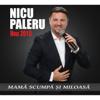 Nicu Paleru - Nicu Paleru: Mama Scumpa Si Miloasa 2018 artwork