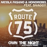 Own the Night (Alex Guesta Tribal Mix) - Single