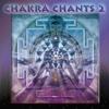 Chakra Chants 2 (feat. Sarah Benson & Andi Goldman) - Jonathan Goldman