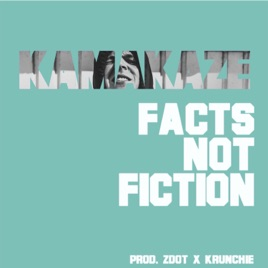 Image result for kamakaze facts not fiction