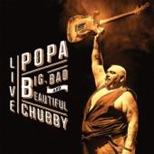 Popa Chubby - Over the Rainbow`