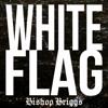 White Flag - Bishop Briggs mp3