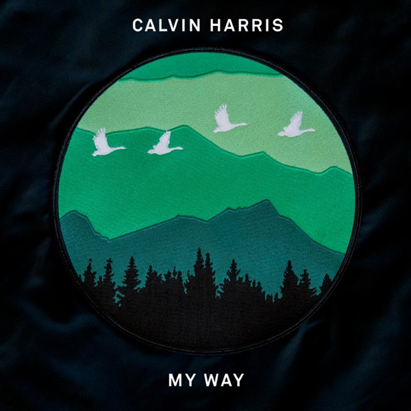 My Way - Calvin Harris song cover