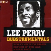 "Lee ""Scratch"" Perry - Iron Fist"