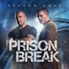Prison Break, Season 4 wiki, synopsis