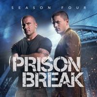 Prison Break, Season 4