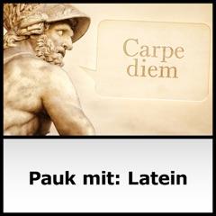 Pauk mit: Latein - ARD-alpha