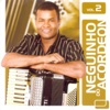 Neguinho do Acordeon, Vol. 2 - Neguinho do Acordeon