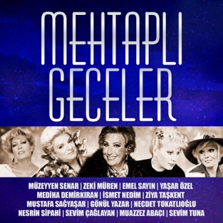 Mehtaplı Geceler – Various Artists