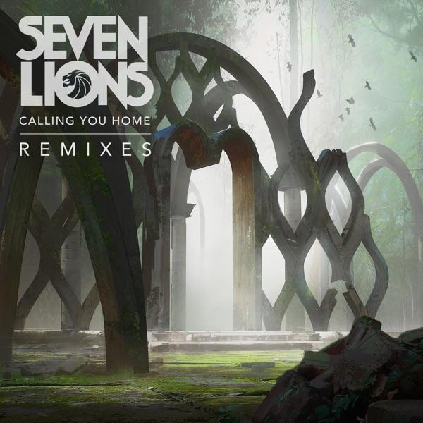 Calling You Home (feat. Runn) [Remixes] - Single