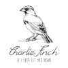 If I Ever Let You Down - Charlie Finch