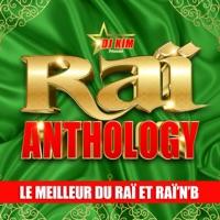 Raï Anthology by DJ Kim: Le meilleur du Raï et Raï'n'B