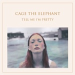 Cage the Elephant - How Are You True