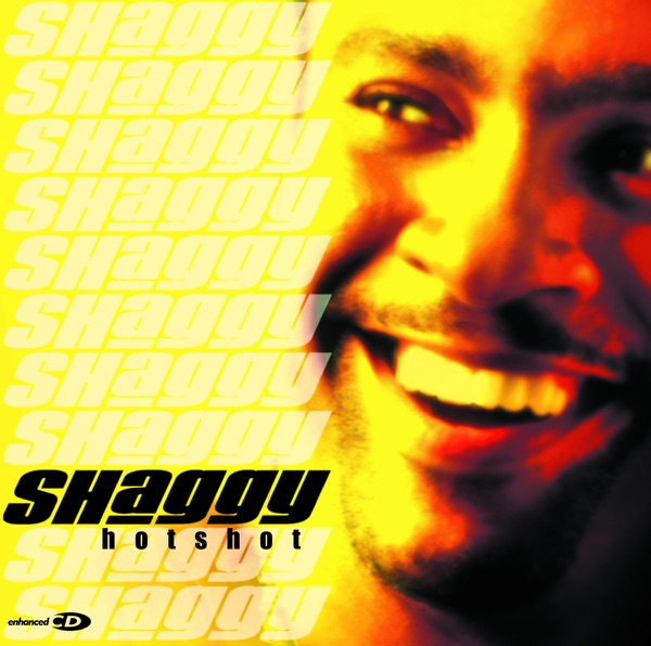 Shaggy - It Wasn't Me