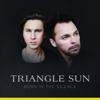 Triangle Sun - Born in the Silence обложка