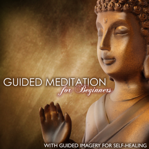 Guided Meditation - Guided Meditation for Beginners - Deep Breathing & Progressive Relaxation