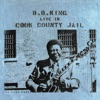 Live In Cook County Jail