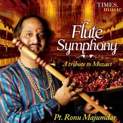 Flute Symphony - EP