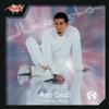 Amr Diab - Saeban Alaya artwork