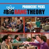 The Big Bang Theory, Producers' Picks - Synopsis and Reviews