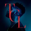 Girls Like (feat. Zara Larsson) - Tinie Tempah