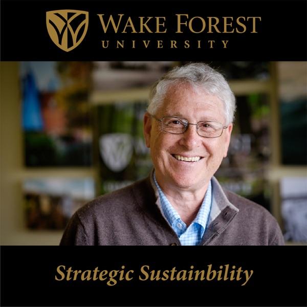 Strategic Sustainability
