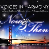 Voices in Harmony - Happy Together