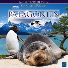 Patagonien: Auf den Spuren von James Darwin