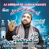 Aj Ashiqan Ne Jashan Manaye Vol 11 Islamic Naats