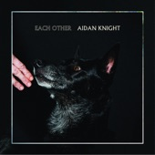 Aidan Knight - The Arp