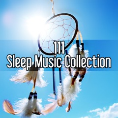 111 Sleep Music Collection: Relaxation Ambient Music Therapy to Reduce Stress Level, Meditation Deep Sleep, Newborn Lullabies for Goodnight, Natural Insomnia Cure