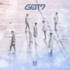 GOT7 - Fly artwork