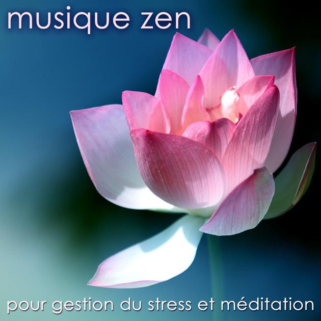 musique zen pour gestion du stress et m ditation musique. Black Bedroom Furniture Sets. Home Design Ideas