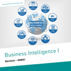 Business Intelligence I (Bachelor)