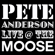 Blue Guitar (Live) - Pete Anderson