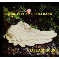 Safe and Sound - Single by The Big Electric Ceili Band on Apple Music