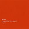 Day Two One - Nils Frahm & F.S.Blumm