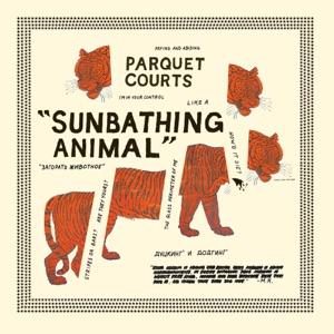 Sunbathing Animal / Content Nausea
