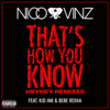 Nico & Vinz - That's How You Know (feat. Kid Ink & Bebe Rexha) [Messed Up HEYHEY Remix] artwork