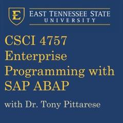 Enterprise Programming - SAP ABAP Programming 2016