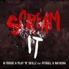 Scream It (feat. Pitbull & Natasha) - EP, N-Trigue & Play-N-Skillz
